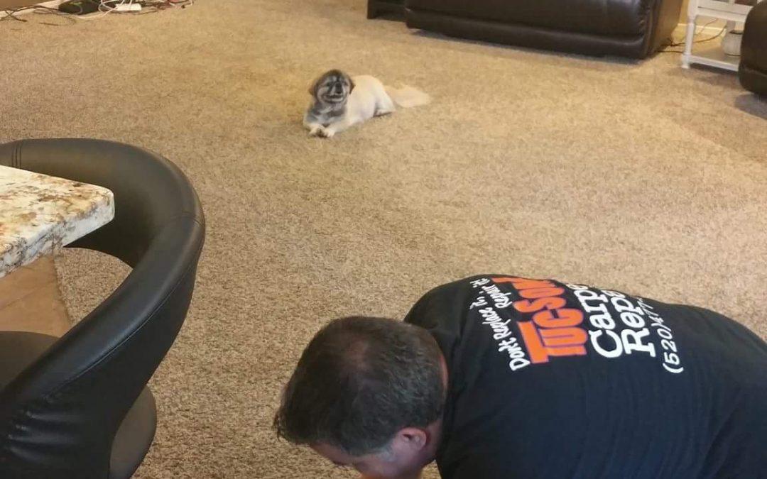Marana Carpet Repair